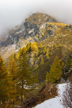 Hiking in high mountain. Autumn colors in a cloudy afternoon. Ayas Valley, Aosta Italy