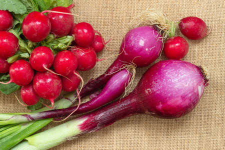 Top view of fresh red Tropea onion and radishes, typical vegetables of the mediterranean diet. Flatlay photography. Stock Photo