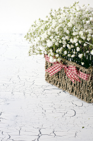 Flowers in a basket, White tiny gypsophila flowers 免版税图像
