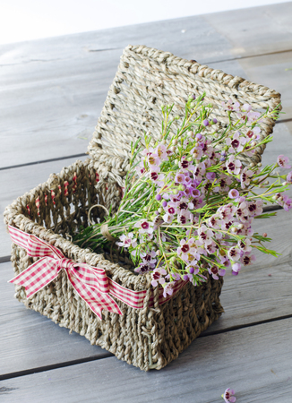 gift basket: A bunch of flowers in gift basket with red bow