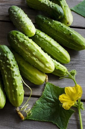 cuke: Freshly picked cucumbers on the wooden background
