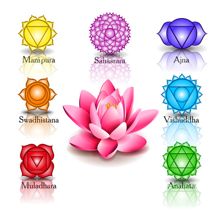 chakra symbols: lotus and Seven chakras Illustration