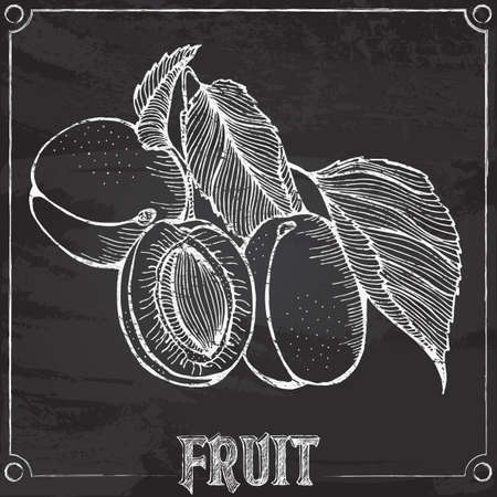 chalk outline: chalk outline drawing with apricot fruits