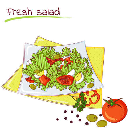Fresh vegetable salad Illustration
