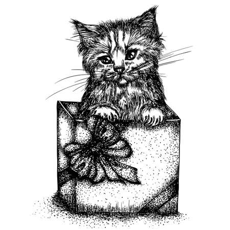 Portrait of a little kitten in a gift box with a bow. Vector hand drawn illustration. Monochrome drawing isolated on white background Foto de archivo - 126367898