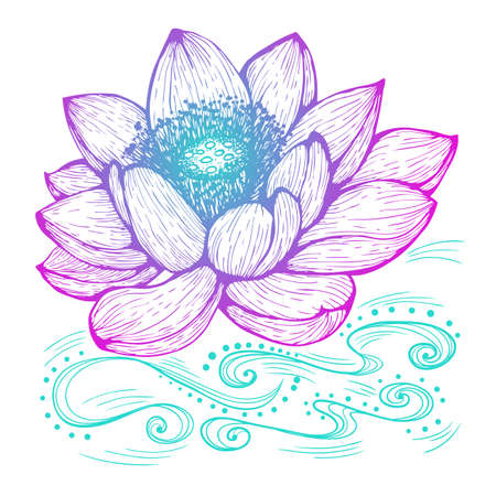 Vector illustration in line art style. Lotus flower isolated on white background. Hand drawn botanical picture Ilustração