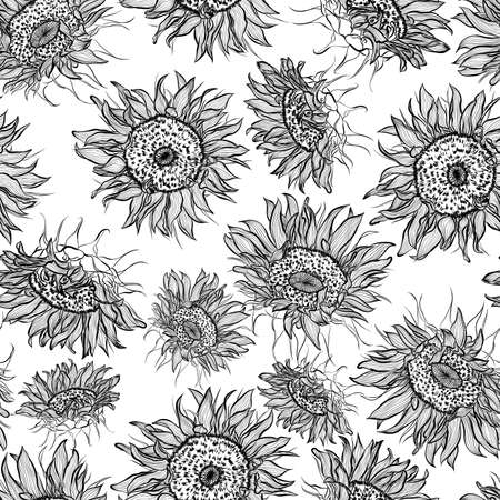 Floral seamless pattern. Vector line art illustration with sunflowers flowers. Hand drawn pattern isolated on white background. Stock Illustratie