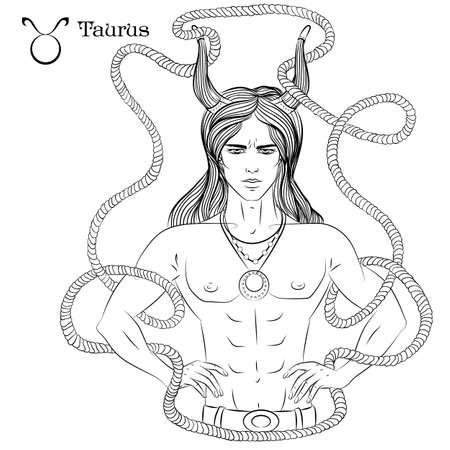 Taurus line art