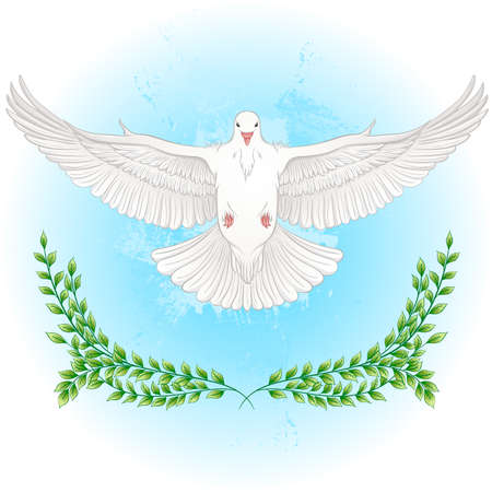 White dove flying with spread wings