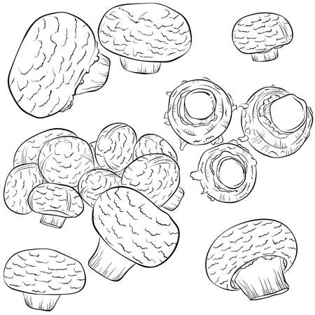 Set of champignons in line art style