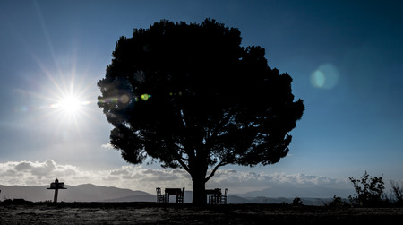 Tree in Crete in a sunny day with chairs, table and a little greek church   photo