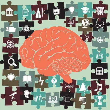 cognicion: El cerebro y rompecabezas con símbolos educación