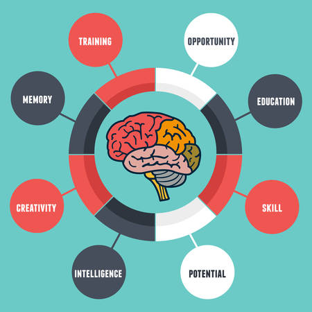 Vector infographic of abilities and qualities of the human brain - vector illustration