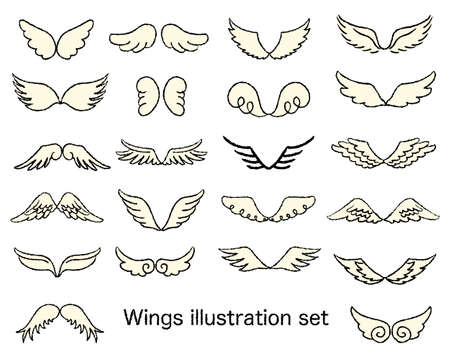 Various types of wing illustration set