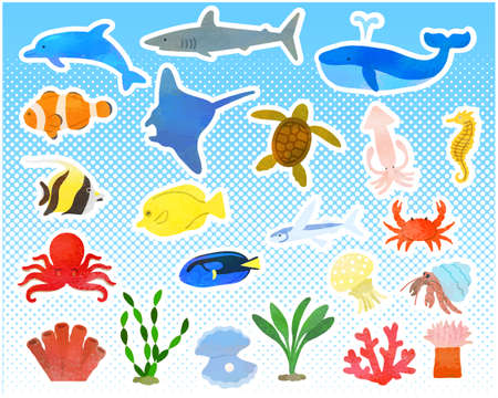 Various sea creatures set / analog style Illustration