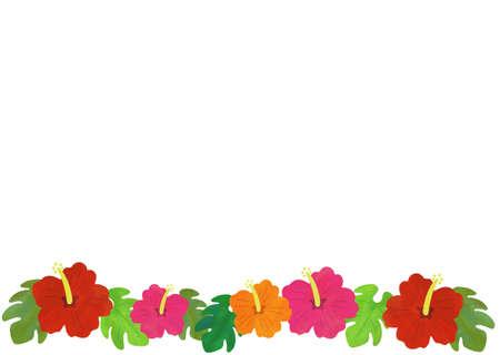Hibiscus background illustration material