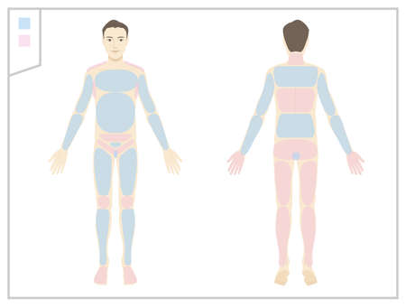 Make / Whole body / Naked / Hair remove area