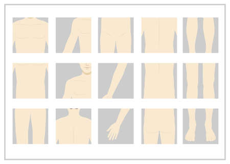 Male body parts illustration set