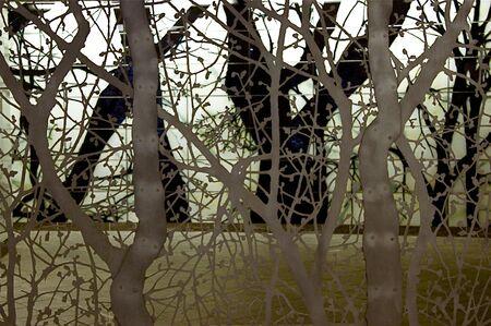 New York, alberi