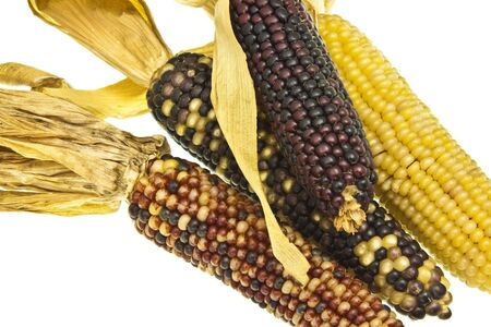 Cobs of corn of various quality