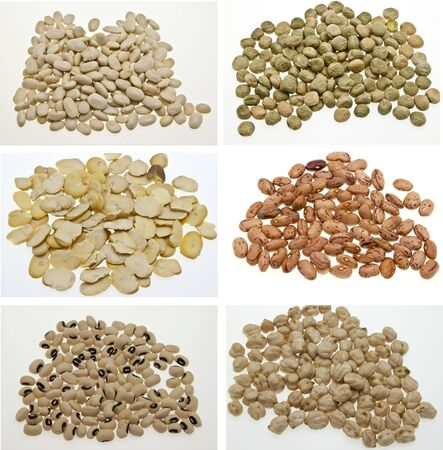 Collage italian dried grain of different seasons Stock Photo