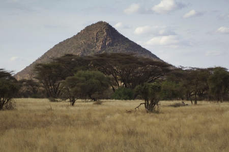 landscape of the savannah in Kenya Stock Photo