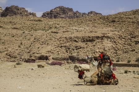 Jorda, sitio de Petra