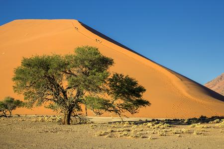 Namibia, Sossusvlei, desierto rojo