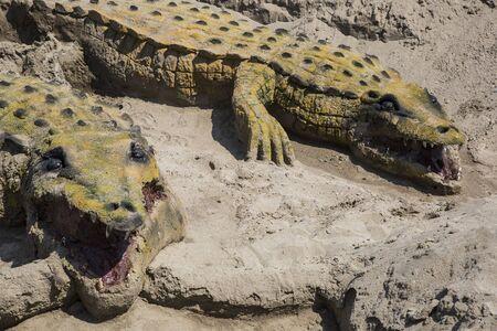 crocodile sand in Andalusoa Stock Photo