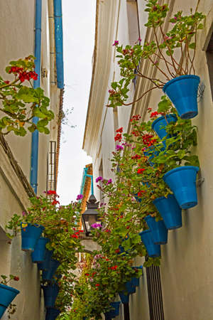alley: Andalusia, alley