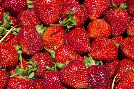 Mercado al aire libre, San Francisco, California, EE.UU., fresas