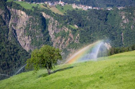 Organic Agriculture in South Tyrol near Bolzano (Italia)