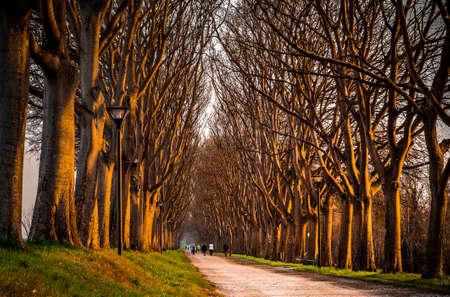 ferrara: Ferrara s Walls  Le Mura di Ferrara
