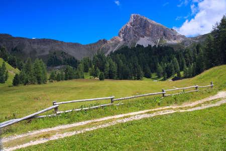 Montagne verdi del Trentino - Val di Fassa Archivio Fotografico