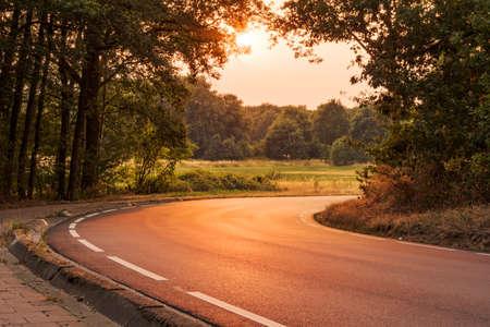 Leading road with golden light Reklamní fotografie