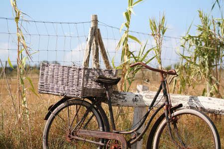 old bicycle, Stock Photo