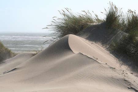 dune shaped bij strong winds