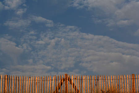 fence in evening light