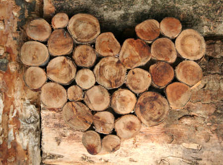 warmness: natural lover Stock Photo