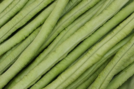 close up of long bean, as background photo