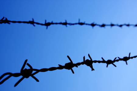 barbed wire against blue sky, selective focus. photo