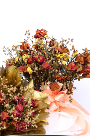lament: Bouquet of dried withered roses on white background.