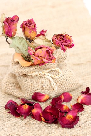 bouquet of dried withered roses and petals over vintage background. photo