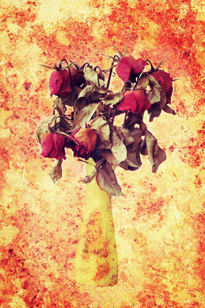 jilted: wither rose, died rose in vase on grungy vintage background.