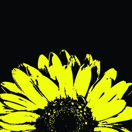 Abstract yellow gerbera flower on black. photo