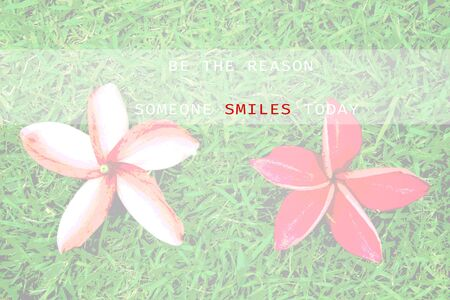 someone: Inspirational Typographic Quote - Be the reason someone smiles today, with red frangipani flowers on grass background.