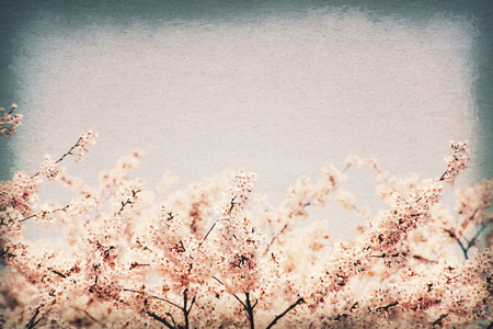 Vintage postcard. Cherry blossoms against blue sky - selective focus. Old paper texture style image. photo