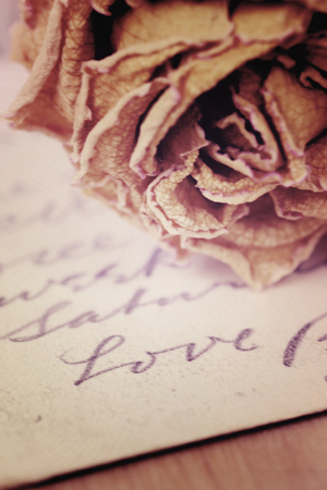 Close up of dry rose and Love word written on card. Soft light vintage style image.