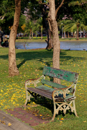 old furniture: Wooden park bench under tree and near a lake.