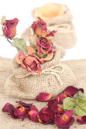 Bouquet of dried withered roses and petals on sackcloth background. Stock Photo